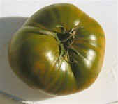 Cherokee Green -Organic Tomato Seeds