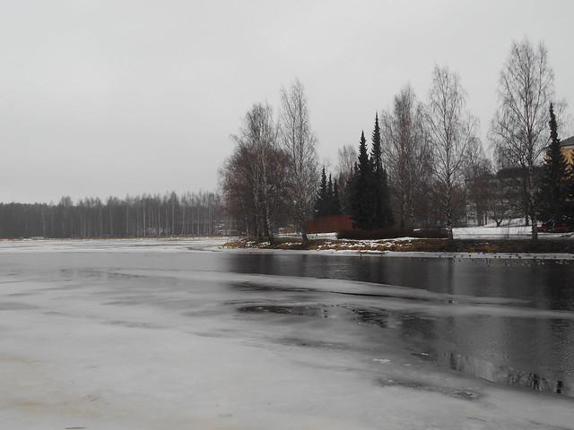 Poikkeuksellisen aikaista järvijäiden sulamista Hämeenlinnassa B 21.2.2015