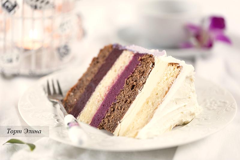 Elina's Cake-182800