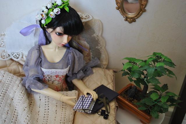 (luts juri 2005) Lise: La collectionite (bas p2) 16752802601_cab19965dc_z