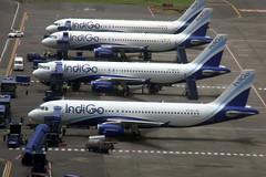 IndiGo A320 stands