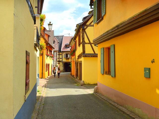 the yellow lane