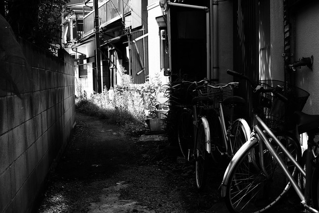 Alley, Sigma DP2 MERRILL, Sigma 30mm F2.8