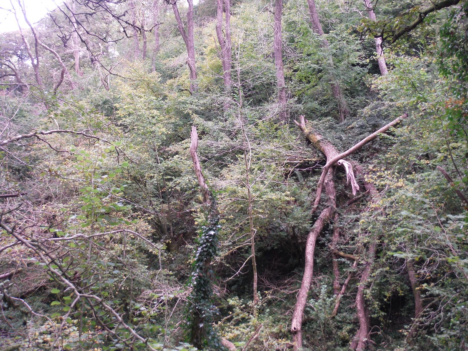Landslip in the Nant Llech Valley SWC Walk 280 Henrhyd Falls - Sgwd Henrhyd (Craig y Nos Circular)