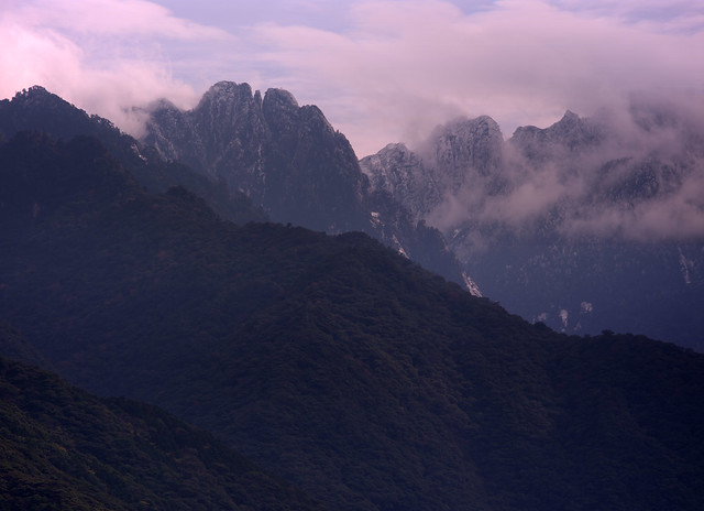 Today's YAKUSHIMA250mm