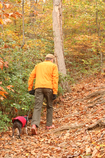 James River State Park Fall 2014 (253)