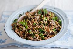 Spelt grains, marinated mushrooms and parsley sala…