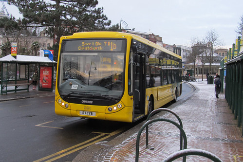 TM7 Yellow Buses