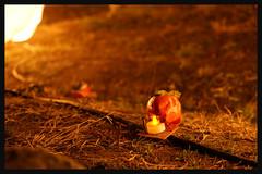 日本京都-嵐山夜燈.30