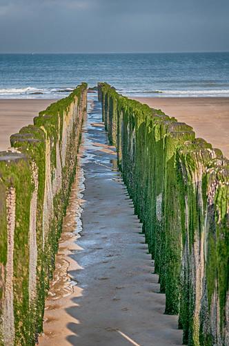 sea beach strand belgium zee knokke