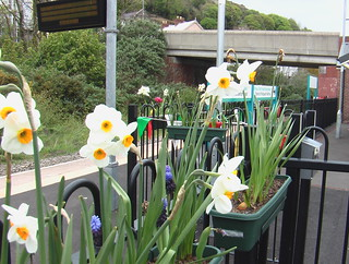 Flags and flowers at Fishguard & Goodwick station