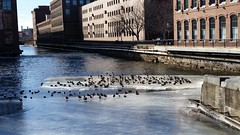 Pawtucket Canal in Winter