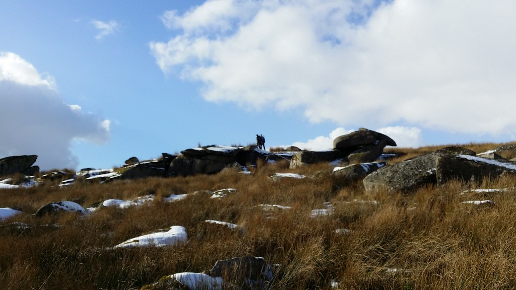 Round Hill Tor #sh #dartmoor