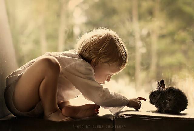 animal-children-photography-elena-shumilova-2-321