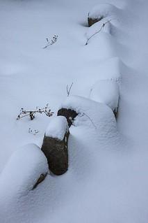 Obligatory snow photo