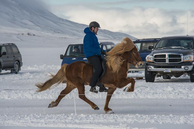 Ís-landsmótið á Svínavatni 2015