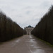 Small photo of Bleakness in Versailles gardens
