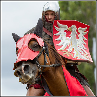 Knight on horseback, 2015 Invitational Jousting Tournament, Upper Hutt,No.2