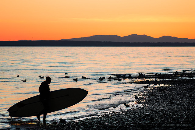 Mother, Mother Ocean ~ White Rock, BC