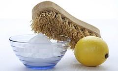 el limon como remedio para matar la pulgas