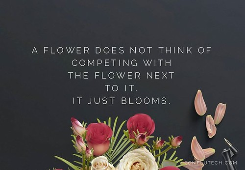 A #flower does not think of competing with the flower next to it. It just #blooms. #quotes #quote #qotd #inspirationalquotes #conflutech #design #flowers #blog via Instagram http://ift.tt/2alOWfJ