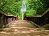 MI Clinton County Park Pedestrian Footbridge DS 2016