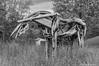 Wooden Horse-2016-2.jpg