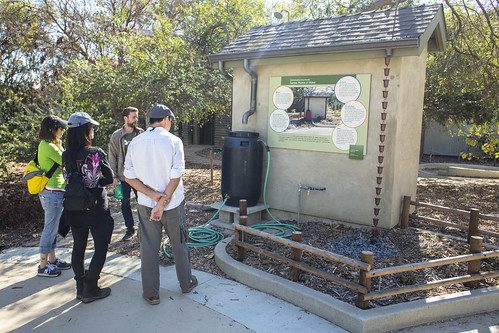 Drought Solutions Tour - Native Plant Walk