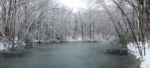 park trees winter panorama snow ny newyork water pond woods stitch westchestercounty southsalem lewisboro microsoftice microsoftimagecompositeeditor sonydscrx100 onatrupreserve