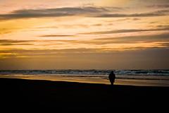 Seaside of Juist - wanderlust