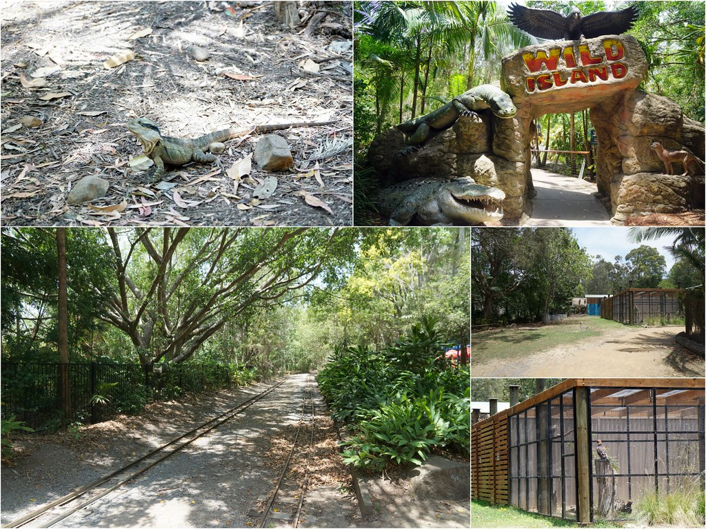 gold coast - Currumbin Wildlife Sanctuary - trip 4