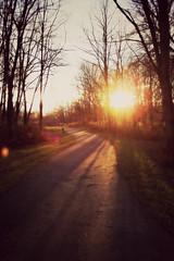Sunset on Path
