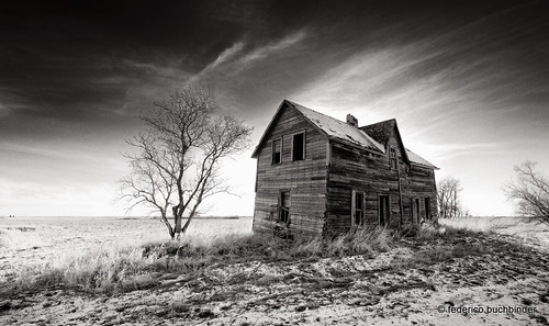 old trees winter bw house snow cold abandoned monochrome grass countryside decay manitoba prairie abandonment decayed decaying cartwright ruralexploration rurex