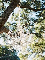 Jessica Scott Photography