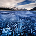 Frozen in Time | Abraham Lake, Canadian Rockies