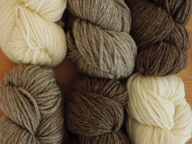 West Yorkshire Spinners BFL DK. Available in Greece only at Plectorium in Larisa.