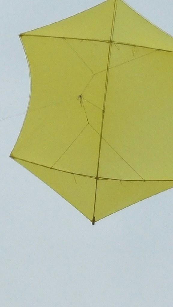 Five stringer.  10 foot rokkaku kite.