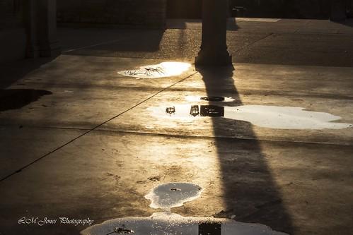 sunset evening march warm cincinnati sunny pavilion earlyspring aultpark 20150311aultevening