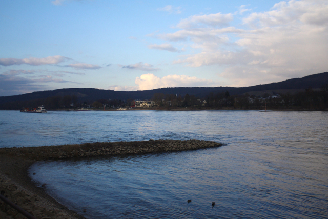 Late afternoon on the River Rhine, Bonn