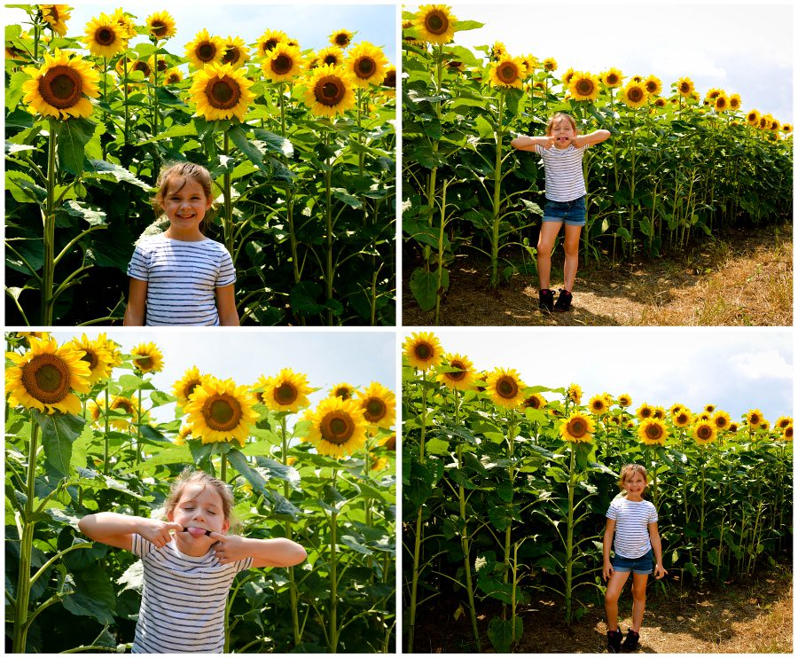 lexie and the sunflowers
