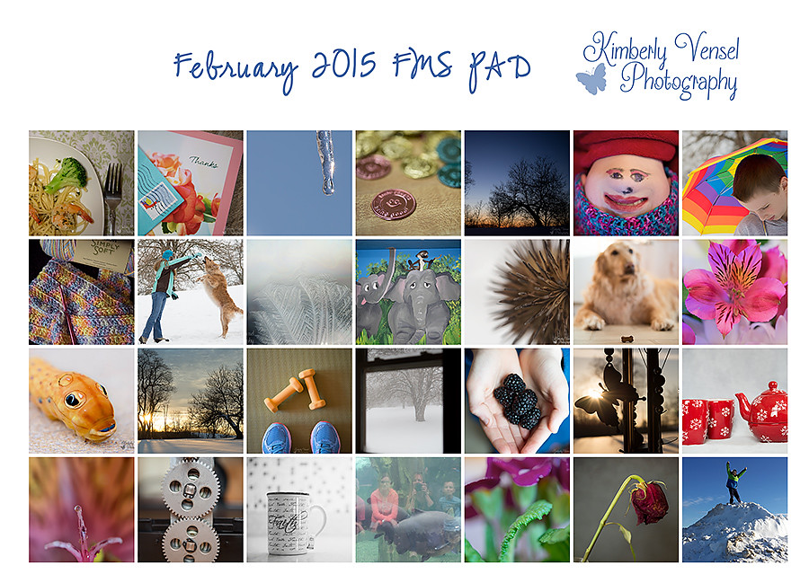 February FMS PAD collage