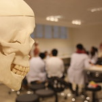 Anatomy Laboratory 7