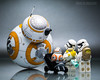 """BB-8: """"Bring-Your-Baby-to-Work"""" Day."""