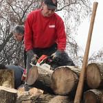 2014 - Holzeraktion Vagoweiher