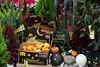 At a flower shop by elmojenny