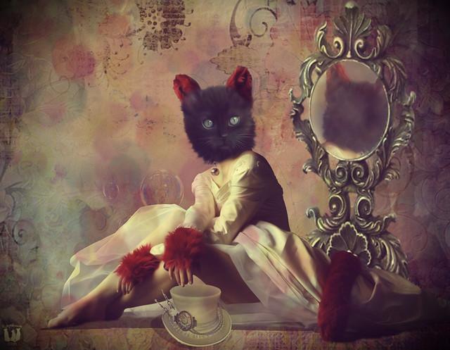 Pretty Miss Kitty!