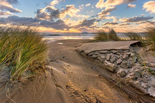 water grass clouds sunrise denmark mud erosion scandinavia skagen jylland grenen ef1740mml canon6d jutlan bentvelling