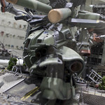 GBWC2014_World_representative_exhibitions-118