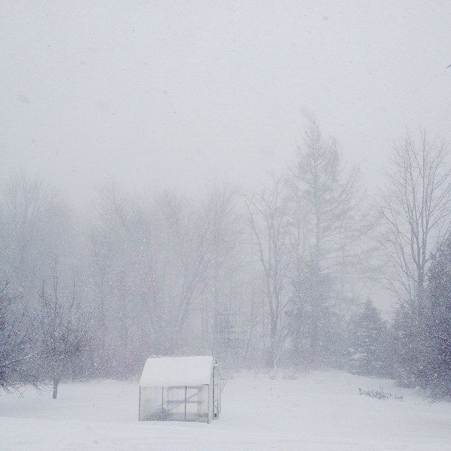 snow squall #207gram #maine #weatherreport