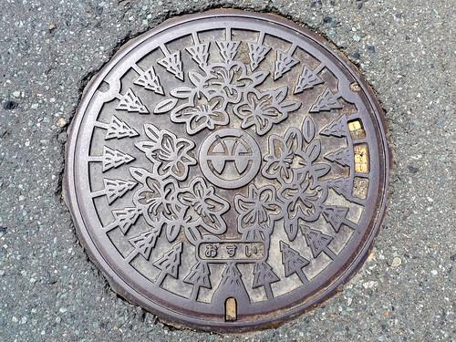 Miyama Fukui, manhole cover 2 (福井県美山町のマンホール2)